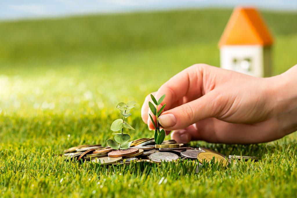 הפרמטרים למציאת הנכס המושלם